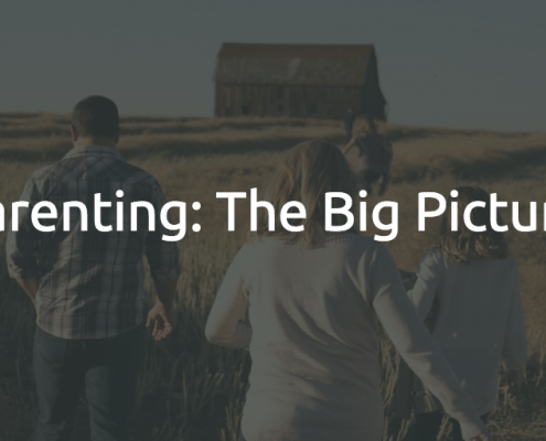 PARENTING THE BIG PICTURE