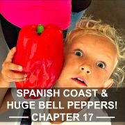 SPANISH COAST AND HUGE BELL PEPPERS